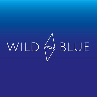 Wild Blue Digital