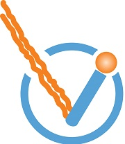 ioVista