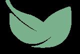 Bay Leaf Digital