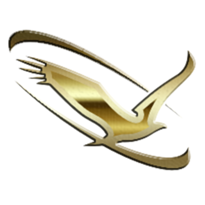 Soaring Eagle Network