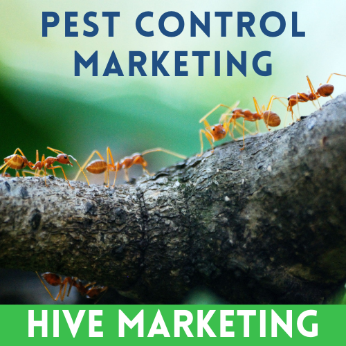 Hive Marketing