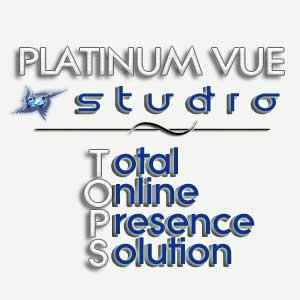 Platinum Vue Studio